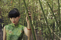 Young woman wearing traditional Chinese dress standing in bamboo forest - Alex Mares-Manton