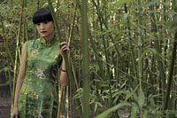 Young woman wearing Chinese traditional dress standing in bamboo forest - Alex Mares-Manton