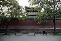 Old person sitting on a bench in a park, Beijing, China - Alex Mares-Manton