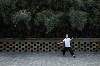 Man doing tai chi in a park - Alex Mares-Manton