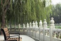 Empty park bench in Beihai park, China - Alex Mares-Manton