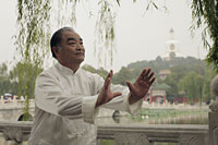 Older man doing Tai Chi in park. Beihai Park, China - Alex Mares-Manton
