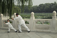 Older man and young boy doing Tai Chi in park, Beijing, China - Alex Mares-Manton