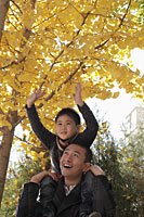 Young boy on dad's shoulders looking at the trees - Alex Mares-Manton
