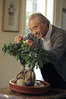 Older man pruning his bonsai tree - Alex Mares-Manton