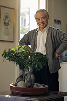 Older man looking at his bonsai tree - Alex Mares-Manton