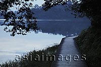 Wooden path by edge of lake surrounded by trees in the evening - Alex Mares-Manton