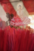 Close up of incense sticks and Buddha in lotus flower - Asia Images Group