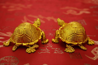 Still life of a pair of gold tortoise figurines - Asia Images Group