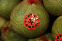 Still life of pomelo fruit at market - Asia Images Group