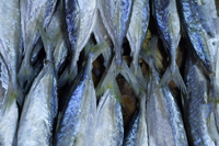 Fish at market - Asia Images Group