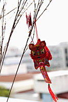 Chinese dragon decoration hanging from branch - Asia Images Group