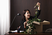 Young woman sitting at desk pulling a plant out of a box - Asia Images Group
