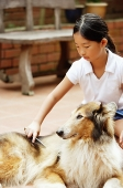 Girl grooming dog - Asia Images Group