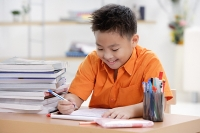 Boy doing homework - Asia Images Group