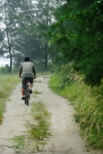 Rear view of a man cycling - Asia Images Group