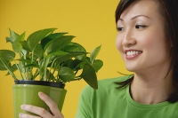 Young Woman looking at house plant - Asia Images Group