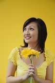 Young woman holding yellow flowers, looking away - Asia Images Group