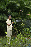 Mature man watering plants in garden - Asia Images Group