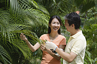 Couple outdoors in garden, looking at palm plant - Asia Images Group