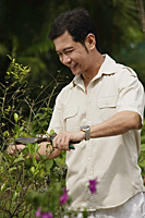 Man pruning bushes in garden - Asia Images Group