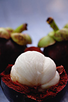 Mangosteen - Asia Images Group
