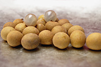 Longan fruits - Asia Images Group