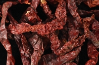 Dried red chilli - Asia Images Group