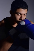Boxer - Asia Images Group
