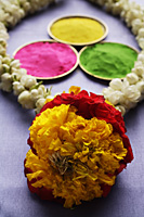 Indian colored powder paints with flower garland - Asia Images Group