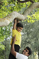 Father helping young boy jump down from tree - Asia Images Group