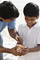 Father and son looking at sea shell together - Asia Images Group