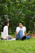 Couple in park, sitting on grass, picnic basket next to them - Asia Images Group