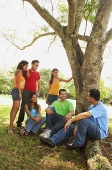 Young men and women, sitting in park, talking - Asia Images Group