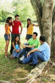 Young adults, sitting and standing in park, talking - Asia Images Group