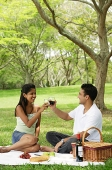 Couple in park, having a picnic, toasting with wine glasses - Asia Images Group
