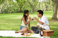 Couple having picnic, toasting with wine glasses - Asia Images Group