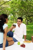 Couple toasting with wine glasses, sitting on picnic blanket - Asia Images Group