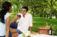 Couple having a picnic, toasting with wine glasses - Asia Images Group