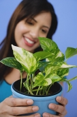 Woman holding potted plant - Asia Images Group