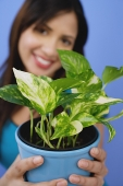 Woman holding potted plant, selective focus - Asia Images Group