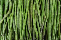 Green beans - Asia Images Group