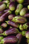 Eggplants - Asia Images Group