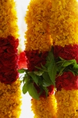 Brightly coloured flower garlands - Asia Images Group