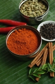 Still life of masala powder, seeds, cinnamon sticks and red chillies - Asia Images Group