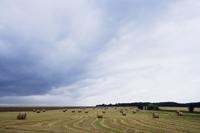 Big sky over field of haystacks - Alex Mares-Manton