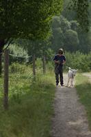 boy walking with stubborn goat - Alex Mares-Manton