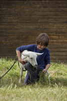boy feeing goat - Alex Mares-Manton