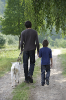 father and son walking with goat - Alex Mares-Manton