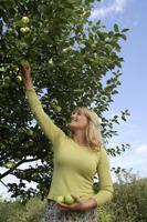 woman picking apples - Alex Mares-Manton